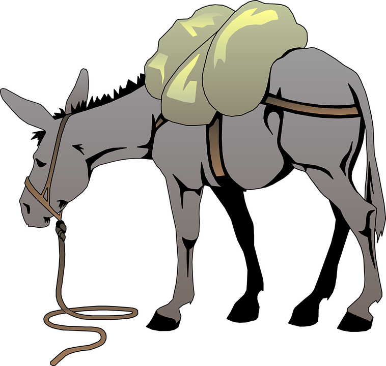 grote lullen VS grote ezels